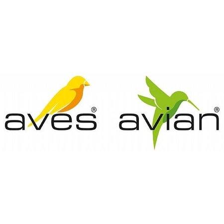 Aves/Avian