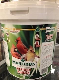 American Red Bird - Kardinalen Manitoba