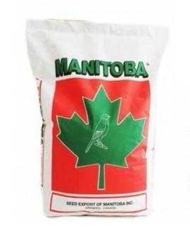 Canary T3 Platinum met Perilla Manitoba (26003/P)