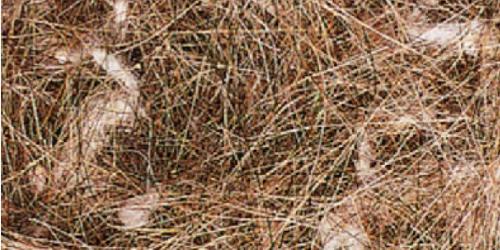 Coir sisal jute cotton moss