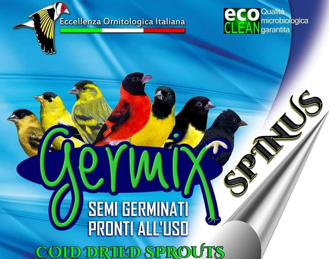 Germix voor Sijzen 3 kg SPINUS