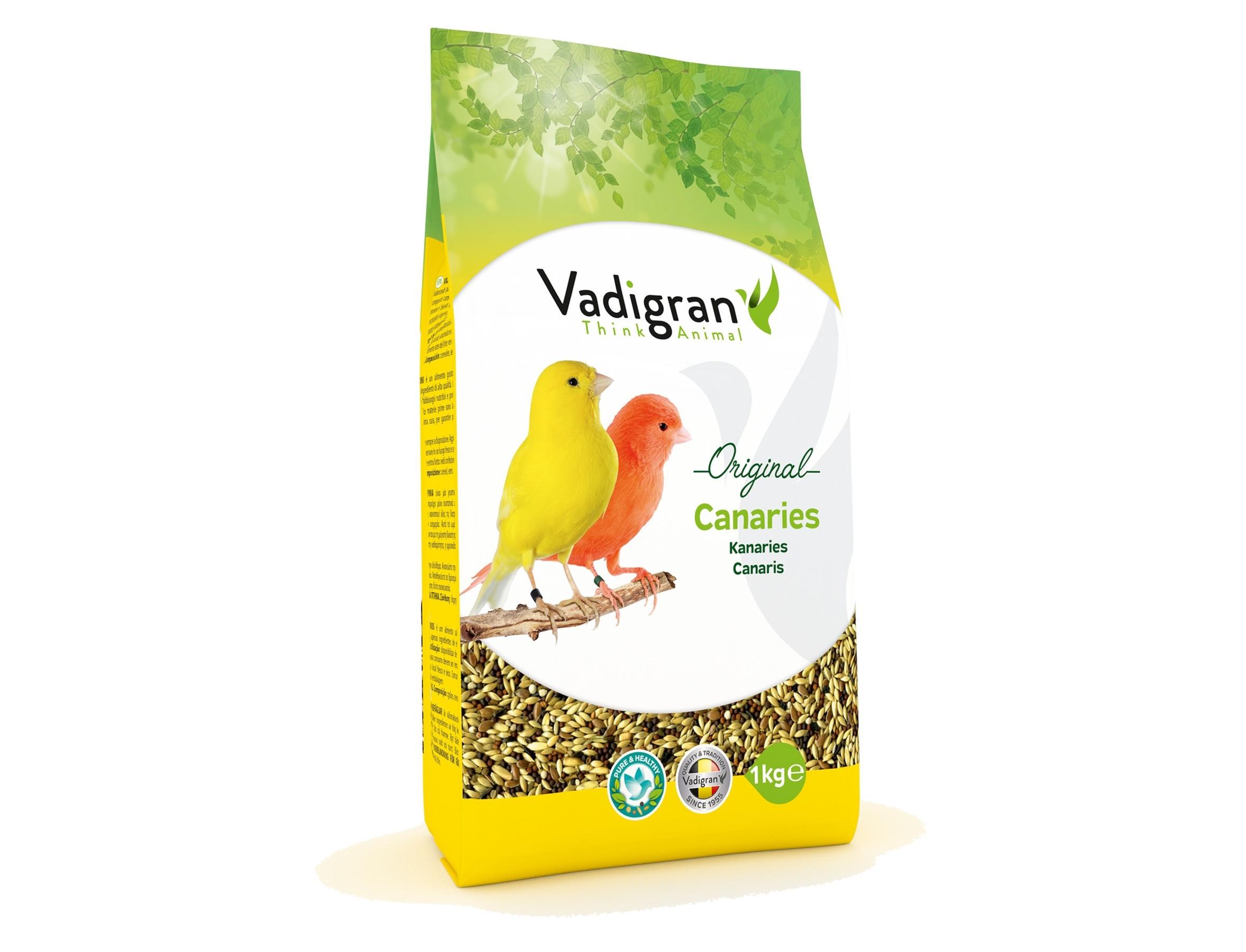 Vadigran Kanaries - 131/132