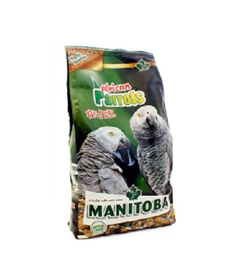 African Parrots Manitoba