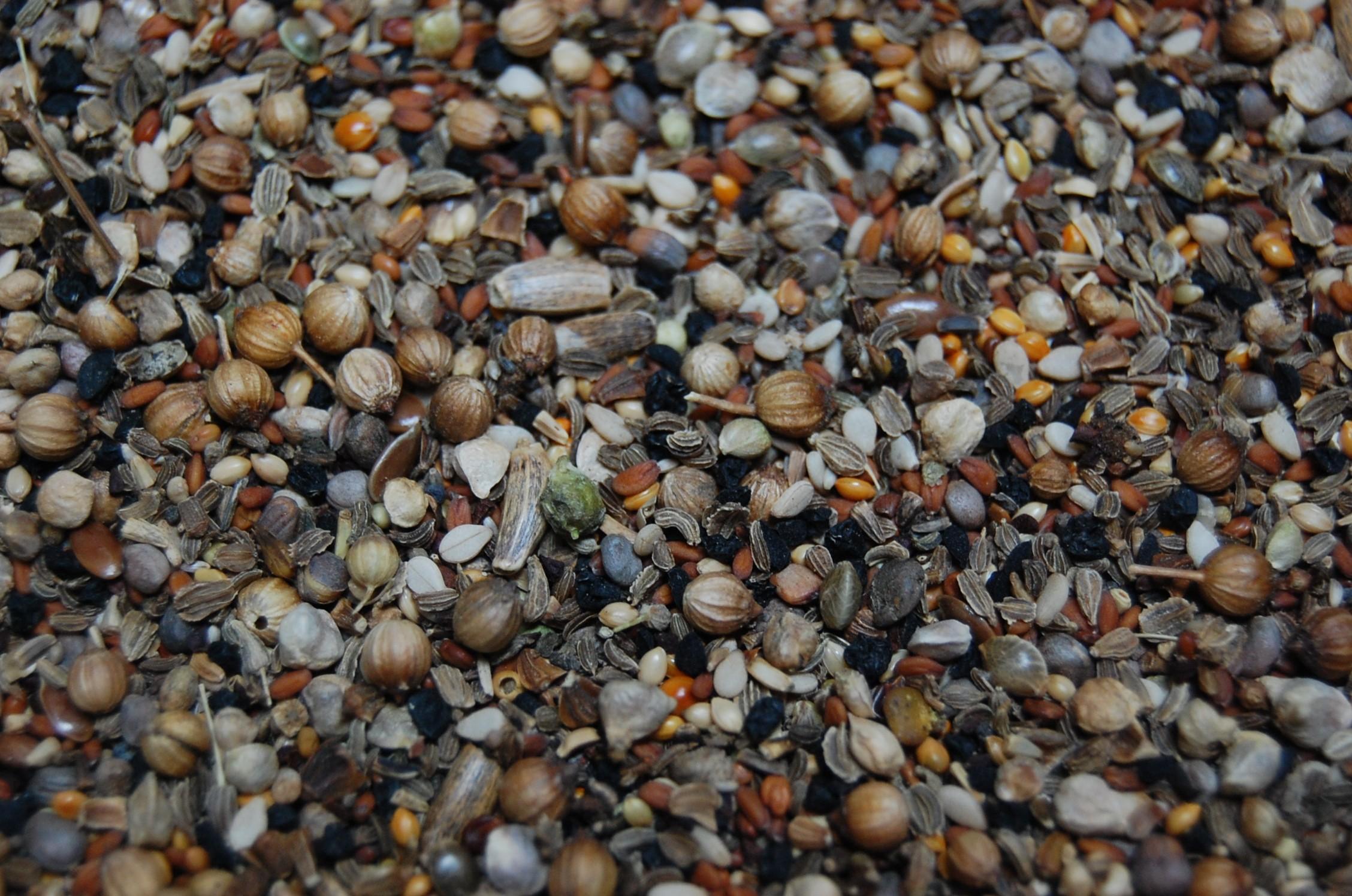 Wilde zaden speciaal (233) zonder raapzaad-1 kg