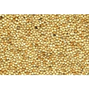 Millet wit -5 kg (18036)