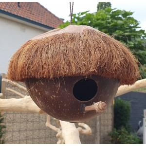 Kokosnoothuisje