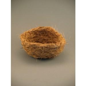 Cocos inlegnest klein