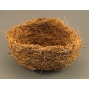 Kokos inlegnest