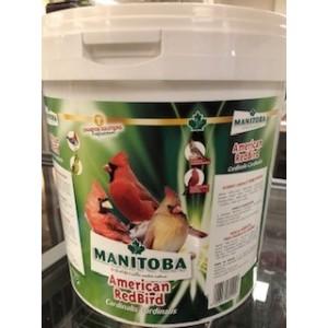American Red Bird - Kardinalen Manitoba (26014)