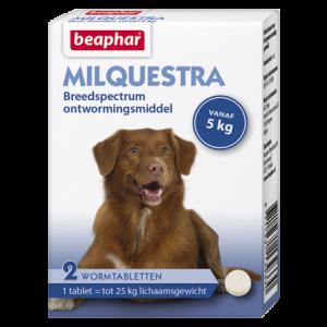 Beaphar Milquestra wormtabletten hond 2 tabl.