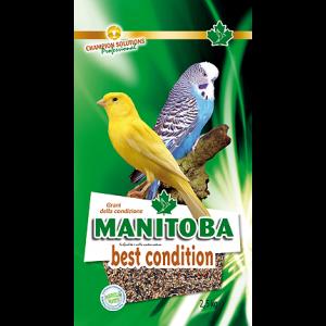 Conditiezaad Manitoba
