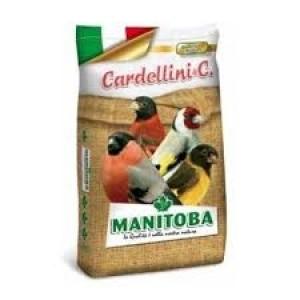 Cardellino Premium Manitoba (26007/P) voor Putters