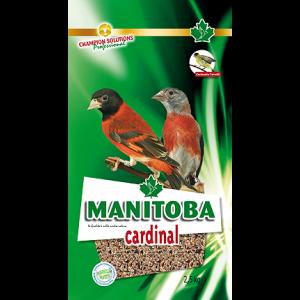 Cardinal Manitoba (Amerikaanse sijsen)
