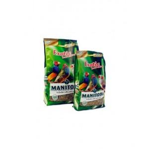 Exotic Best Premium Manitoba (6140)