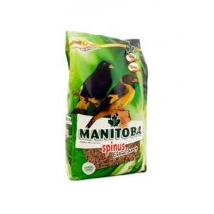 Spinus extra fancy Manitoba (sijzen en distelvinken) (26009)