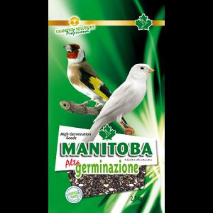 Kiemzaad Manitoba(26070/2)