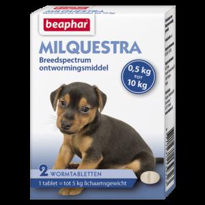 Beaphar Milquestra wormtabletten kleine hond / pup 2 tabl.