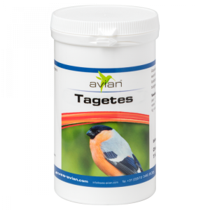 Avian Tagetes