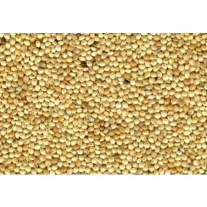 Millet wit -1 kg (18036)